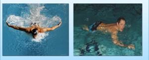 Пловцы